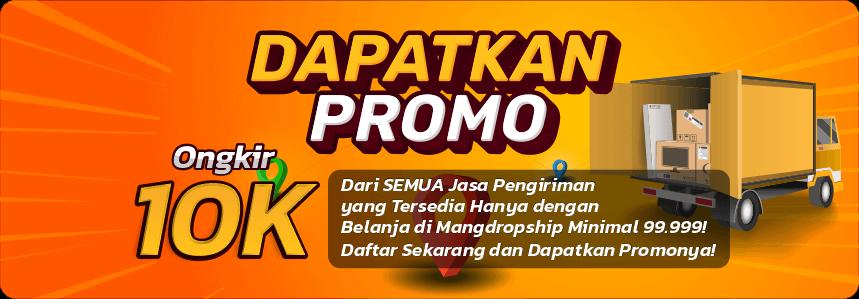 Promo Ongkir